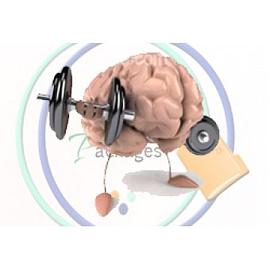 تنشيط الذاكرة والتخطيط الذهني
